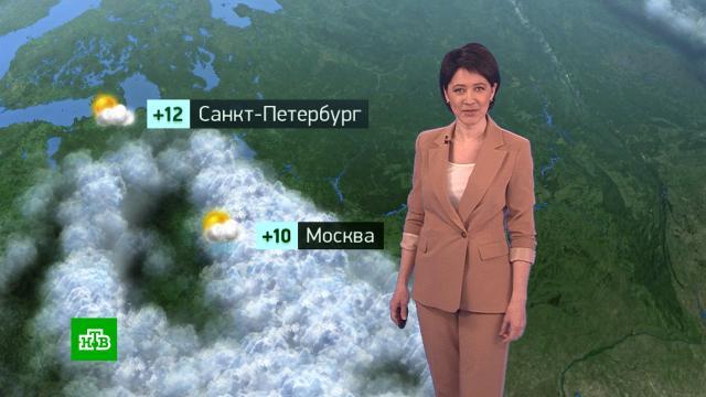Утренний прогноз погоды на 20апреля.погода, прогноз погоды.НТВ.Ru: новости, видео, программы телеканала НТВ
