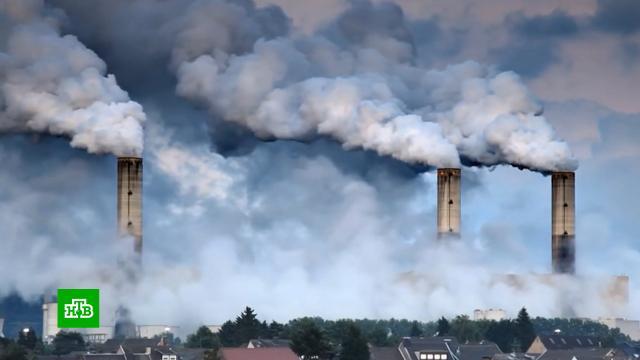 Климатический саммит: чего добиваются США.Байден, Европейский союз, Китай, Путин, США, климат, экология.НТВ.Ru: новости, видео, программы телеканала НТВ