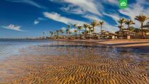 В АТОР спрогнозировали открытие египетских курортов в мае.Египет, МИД РФ, отдых и досуг, туризм и путешествия.НТВ.Ru: новости, видео, программы телеканала НТВ