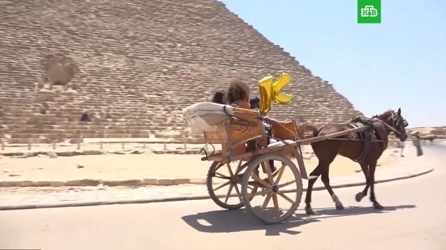 Когда россияне смогут полететь на курорты Египта.Египет, туризм и путешествия.НТВ.Ru: новости, видео, программы телеканала НТВ