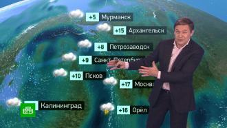 Утренний прогноз погоды на 23апреля