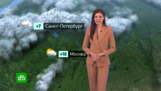 Утренний прогноз погоды на 26 апреля
