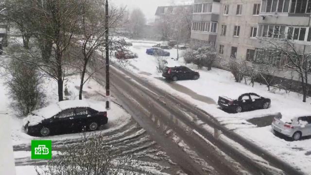 За сутки вМоскве выпало почти 25% месячной нормы осадков.Москва, погода.НТВ.Ru: новости, видео, программы телеканала НТВ