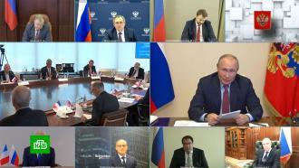 Путин на примере сказки Салтыкова-Щедрина объяснил необходимость «Северного потока — 2»