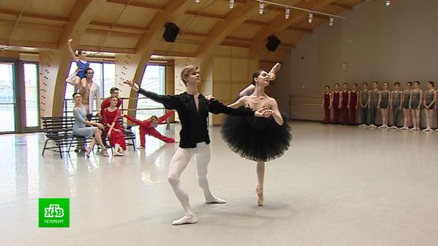 Театр балета Бориса Эйфмана отметил Международный день танца онлайн.Интернет, Санкт-Петербург, балет, театр.НТВ.Ru: новости, видео, программы телеканала НТВ