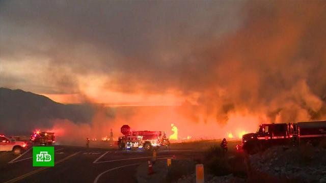 Лесные пожары в Калифорнии угрожают жилым домам.США, лесные пожары, пожары.НТВ.Ru: новости, видео, программы телеканала НТВ
