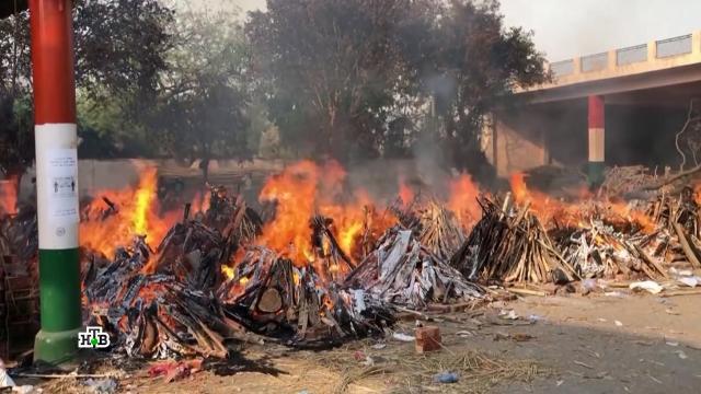 COVID-апокалипсис: что привело к коронавирусной катастрофе в Индии.Индия, болезни, коронавирус, прививки, эпидемия.НТВ.Ru: новости, видео, программы телеканала НТВ