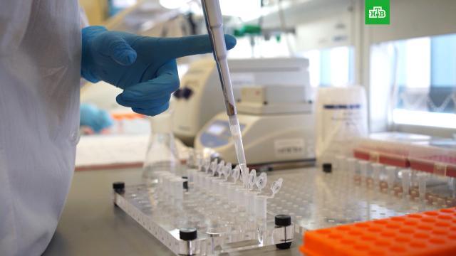 Российская вакцина против полиомиелита защищает и от COVID-19.Российские ученые доказали эффективность отечественной вакцины от полиомиелита в качестве вакцины против коронавирусной инфекции.болезни, коронавирус, наука и открытия, прививки.НТВ.Ru: новости, видео, программы телеканала НТВ