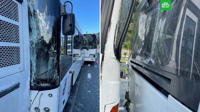 Три автобуса столкнулись вСочи.ДТП, Сочи, автобусы.НТВ.Ru: новости, видео, программы телеканала НТВ