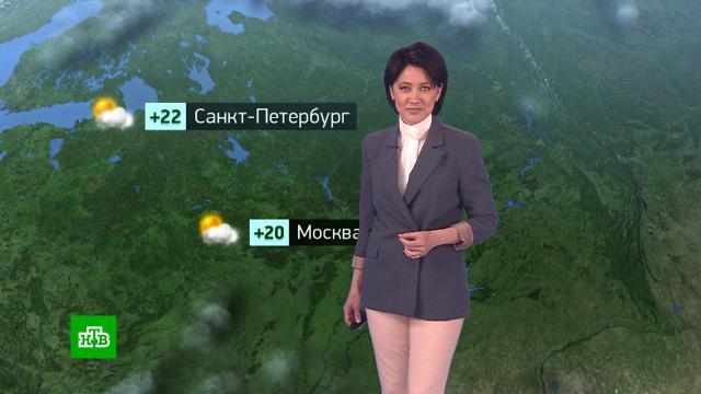 Утренний прогноз погоды на 11мая.погода, прогноз погоды.НТВ.Ru: новости, видео, программы телеканала НТВ