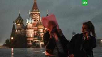Ливни с грозами в Москве будут идти 5 дней.В ближайшие 5 дней в Москве и Подмосковье будет теплая, но дождливая погода, а сам май месяц может стать одним из сырых за всю историю метеонаблюдений.Москва, весна, погода.НТВ.Ru: новости, видео, программы телеканала НТВ