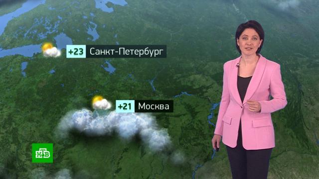 Утренний прогноз погоды на 12мая.погода, прогноз погоды.НТВ.Ru: новости, видео, программы телеканала НТВ