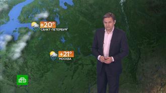 Прогноз погоды на 14 мая.НТВ.Ru: новости, видео, программы телеканала НТВ