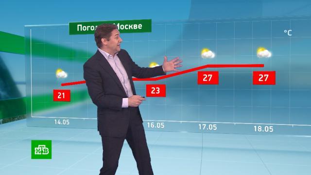 Утренний прогноз погоды на 14мая.погода, прогноз погоды.НТВ.Ru: новости, видео, программы телеканала НТВ