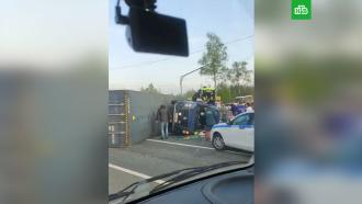 Грузовик и микроавтобус столкнулись под Смоленском: 13 пострадавших