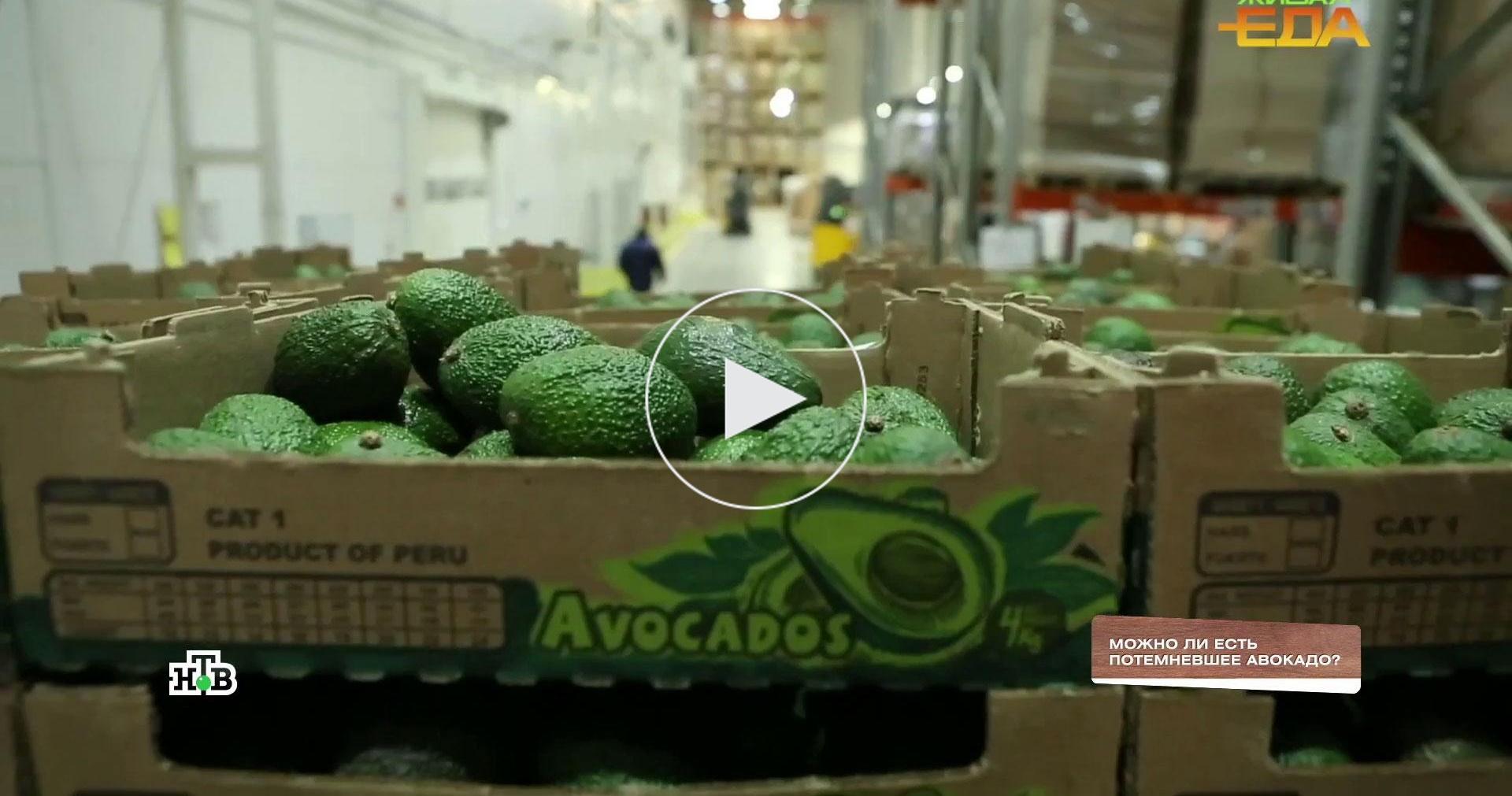 Можноли есть потемневшее авокадо?
