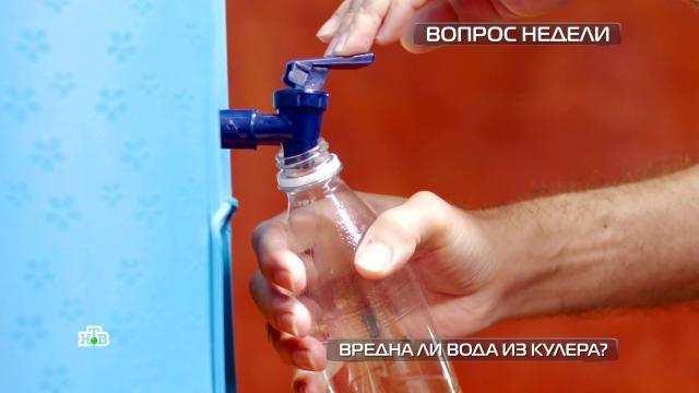 Почему водой из кулера легко отравиться.В Сети то и дело появляются новости об отравлениях людей водой из кулера. Основная причина проблем — отсутствие должного ухода. .здоровье.НТВ.Ru: новости, видео, программы телеканала НТВ