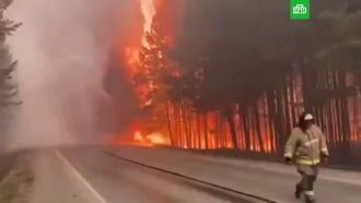 Трассу на Урале перекрыли <nobr>из-за</nobr> полыхающего леса