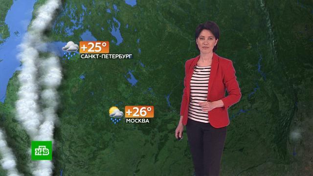 Прогноз погоды на 19мая.погода, прогноз погоды.НТВ.Ru: новости, видео, программы телеканала НТВ