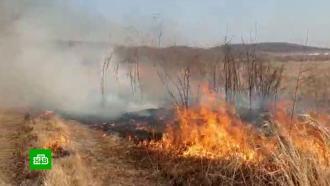 ВТюменской области лесной пожар уничтожил 25домов