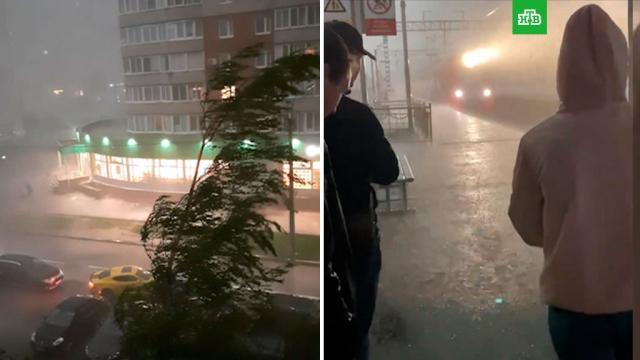 ВПетербурге ликвидируют последствия грозы.Санкт-Петербург, погода, штормы и ураганы.НТВ.Ru: новости, видео, программы телеканала НТВ