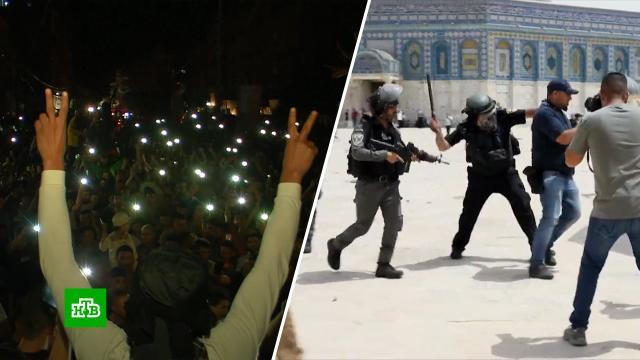 Каждый празднует свою победу: перемирие между Израилем иХАМАС оказалось очень хрупким.Израиль, Палестина, ХАМАС, войны и вооруженные конфликты, перемирие, территориальные споры.НТВ.Ru: новости, видео, программы телеканала НТВ