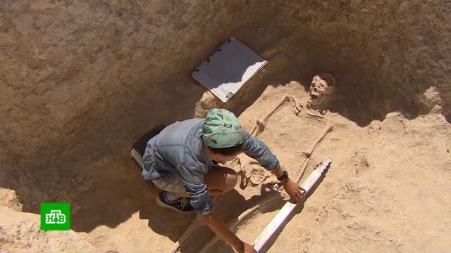 В Крыму нашли тысячи артефактов эпохи бронзового века