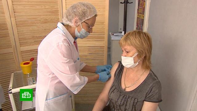 ВЕкатеринбурге привившимся от коронавируса дарят билеты вцирк.Екатеринбург, вакцинация, коронавирус, прививки, цирк, эпидемия.НТВ.Ru: новости, видео, программы телеканала НТВ