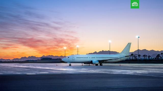 ВКремле оценили ситуацию свозобновлением рейсов на курорты Египта.Египет, Песков, авиационные катастрофы и происшествия, самолеты, туризм и путешествия.НТВ.Ru: новости, видео, программы телеканала НТВ