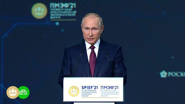 Путин поручил организовать платную вакцинацию для иностранцев.Путин, болезни, вакцинация, коронавирус, прививки, эпидемия.НТВ.Ru: новости, видео, программы телеканала НТВ