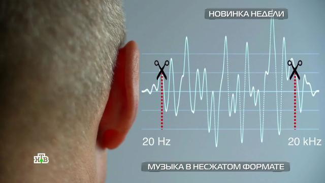 Lossless: все омузыке внесжатом формате.НТВ.Ru: новости, видео, программы телеканала НТВ