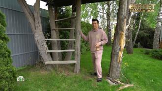 Кирилл Туриченко из группы «ИванушкиInternational» построил себе дом на дереве