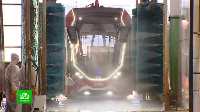 Трамваи и автобусы Петербурга дезинфицируют в преддверии Евро-2020.Роспотребнадзор, Санкт-Петербург, общественный транспорт, футбол.НТВ.Ru: новости, видео, программы телеканала НТВ