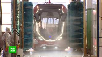Трамваи и автобусы Петербурга дезинфицируют в преддверии Евро-2020