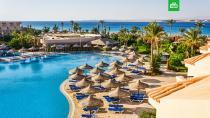 Источник: возобновление авиасообщения с курортами Египта ожидается в начале июля.Египет, туризм и путешествия.НТВ.Ru: новости, видео, программы телеканала НТВ