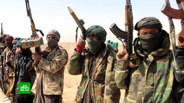ВАфганистане боевики убили 10сотрудников британо-американской НКО.Афганистан, Байден, США, армии мира, войны и вооруженные конфликты.НТВ.Ru: новости, видео, программы телеканала НТВ