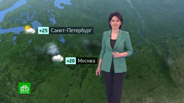 Утренний прогноз погоды на 9июня.погода, прогноз погоды.НТВ.Ru: новости, видео, программы телеканала НТВ