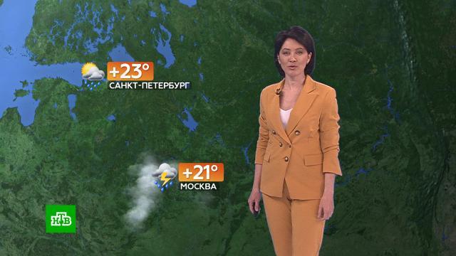 Прогноз погоды на 11июня.погода, прогноз погоды.НТВ.Ru: новости, видео, программы телеканала НТВ