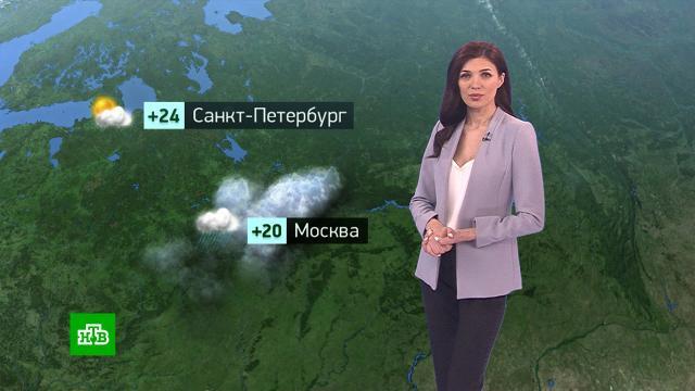 Утренний прогноз погоды на 10июня.погода, прогноз погоды.НТВ.Ru: новости, видео, программы телеканала НТВ