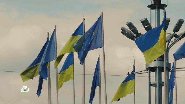 Рассадник ненависти: что общего между Украиной и нацистской Германией