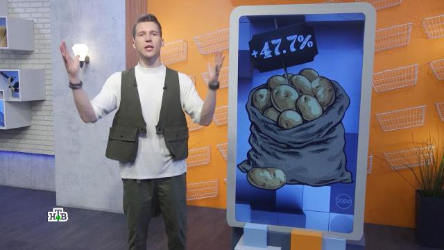 Фермеры объяснили причину подорожания картофеля.еда, магазины, продукты, тарифы и цены.НТВ.Ru: новости, видео, программы телеканала НТВ