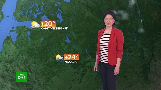 Прогноз погоды на 16июня.погода, прогноз погоды.НТВ.Ru: новости, видео, программы телеканала НТВ