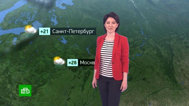 Утренний прогноз погоды на 15июня.погода, прогноз погоды.НТВ.Ru: новости, видео, программы телеканала НТВ