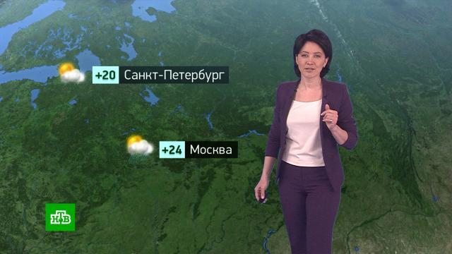 Утренний прогноз погоды на 16июня.погода, прогноз погоды.НТВ.Ru: новости, видео, программы телеканала НТВ