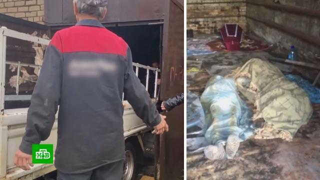 Тела из забайкальского гаража-морга вывозили, как мешки скартошкой.Забайкальский край, больницы, морги.НТВ.Ru: новости, видео, программы телеканала НТВ