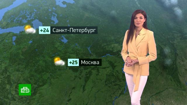 Утренний прогноз погоды на 17июня.погода, прогноз погоды.НТВ.Ru: новости, видео, программы телеканала НТВ