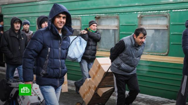 Мигрантов в Россию хотят возить чартерными поездами.мигранты, железные дороги, поезда, сельское хозяйство, экономика и бизнес.НТВ.Ru: новости, видео, программы телеканала НТВ