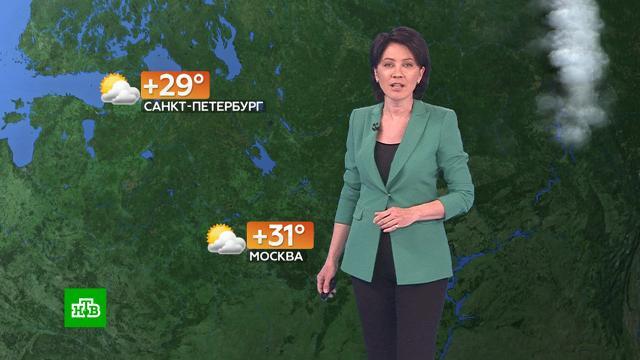 Прогноз погоды на 19июня.погода, прогноз погоды.НТВ.Ru: новости, видео, программы телеканала НТВ