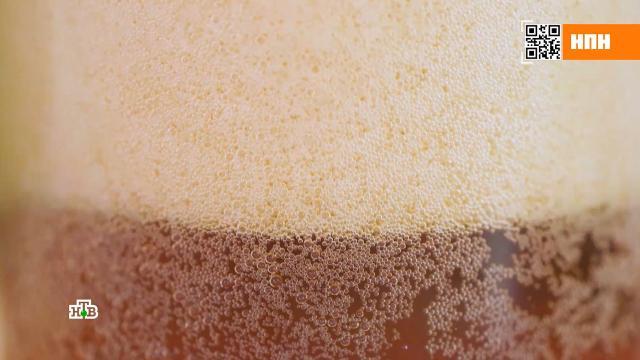 Подкрашенная газировка или эталонный напиток: тест образцов кваса.напитки.НТВ.Ru: новости, видео, программы телеканала НТВ