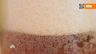 Подкрашенная газировка или эталонный напиток: тест образцов кваса.НТВ.Ru: новости, видео, программы телеканала НТВ